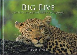 Big Five / Africa de sud