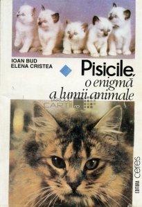 Pisicile, o enigma a lumii animale