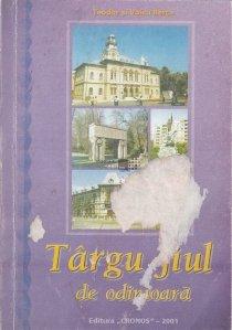 Targu Jiul de odinioara