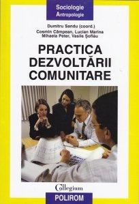 Practica dezvoltarii comunitare