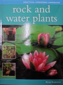 Rock and water plants