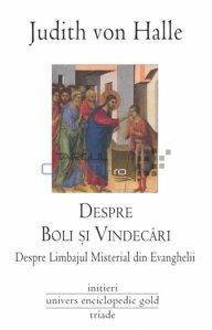 Despre boli si vindecari si despre limbajul misterial din Evanghelii