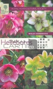 Hellebores / Spanzul