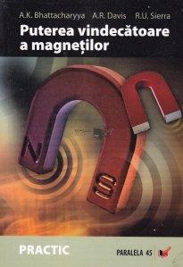 Puterea vindecatoare a magnetilor