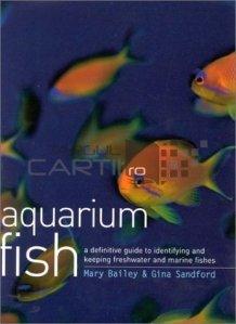 Aquarium fish / Pesti de acvariu