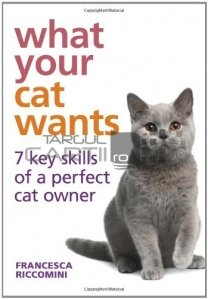 What your cat wants / Ce vrea pisica ta