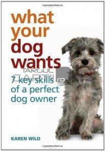 What your dog wants / Ce vrea cainele tau