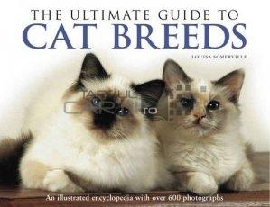 The ultimate guide to cat breeds / Ghid pentru rase de pisici