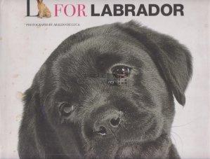 L for Labrador