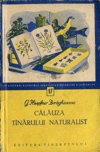 Calauza tinarului naturalist