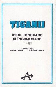 Tiganii intre ignorare si ingrijorare