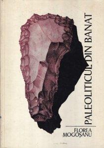 Paleoliticul din Banat