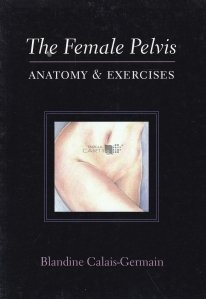 The female pelvis / Pelvisul feminin / Anatomie si exercitii