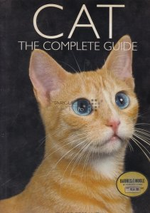 Cat / Pisica. Ghidul complet.
