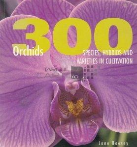 300 Orchids / 300 de orhidee