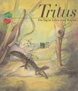 Tritus