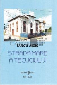 Strada Mare a Tecuciului