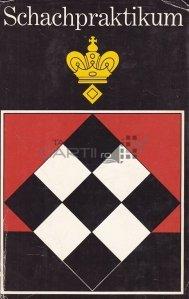 Schachpraktikum / Șah Internship