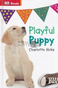 Playful Puppy / Cățeluș jucăuș