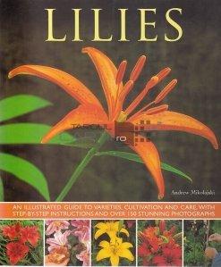 Lilies / Crini