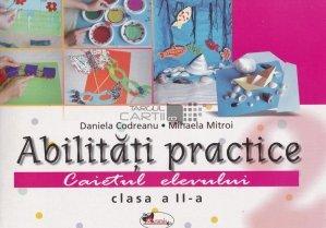 Abilitati practice