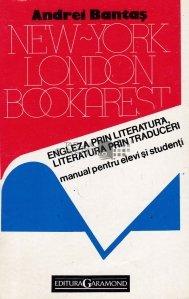 Engleza prin literatura, literatura prin traduceri