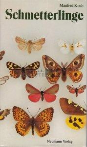 Schmetterlinge / Fluturi