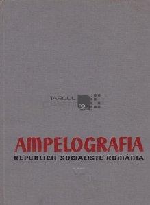 Ampelografia