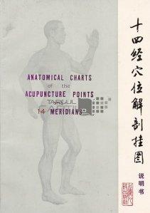 Anatomical charts of the acupuncture points and 14 meridians / Diagrame anatomice ale punctelor de acupunctură și 14 meridiane