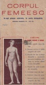 Corpul femeesc