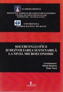 Socurile entropice si dezvoltarea sustenabila la nivel microeconomic