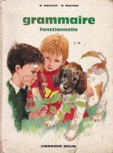 Grammaire fonctionnelle / Gramatica functionala - de la gramatica la exprimare scrisa