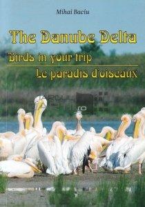 The Danube Delta / Delta Dunarii - Pasari din calatoria noastra. Paradisul lor
