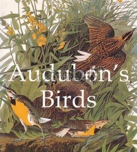 Audubon's Birds / Pasarile lui Audubon's