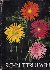 Schnittblumen / Flori taiate