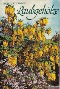 Laubgeholze / Copac cu frunze cazatoare
