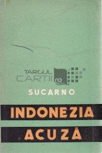Indonezia acuza