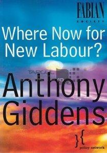 Where Now for New Labour? / Incotro pentru o noua munca?