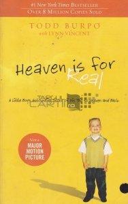 Heaven Is for Real / Raiul exista - extraordinara poveste a unui baietel despre drumul sau pana in rai si inapoi