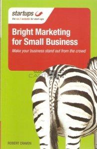 Bright marketing for small business / Marketing inteligent pentru afaceri mici