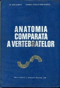 Anatomia comparata a vertebrelor