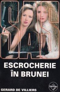 Escrocherie in Brunei