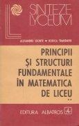 Principii si structuri fundamentale in matematica de liceu