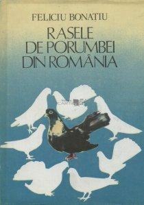 Rasele de porumbei din Romania