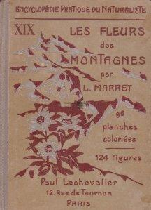 Les fleurs des Montagnes / Florile de munte