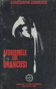 Aforismele lui Brancusi