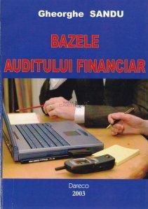 Bazele auditului financiar