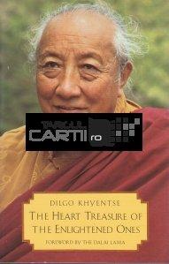 The Heart Treasure of Enlightened Ones / Tezaurul inimii celor iluminati