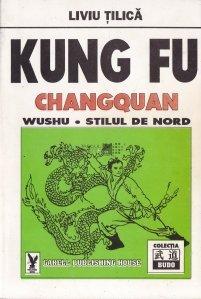 Kung Fu. Changquan. Wushu. Stilul de nord
