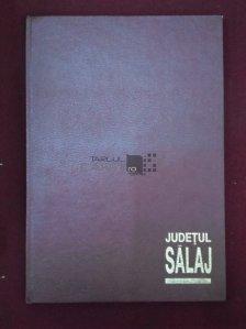 Judetul Salaj